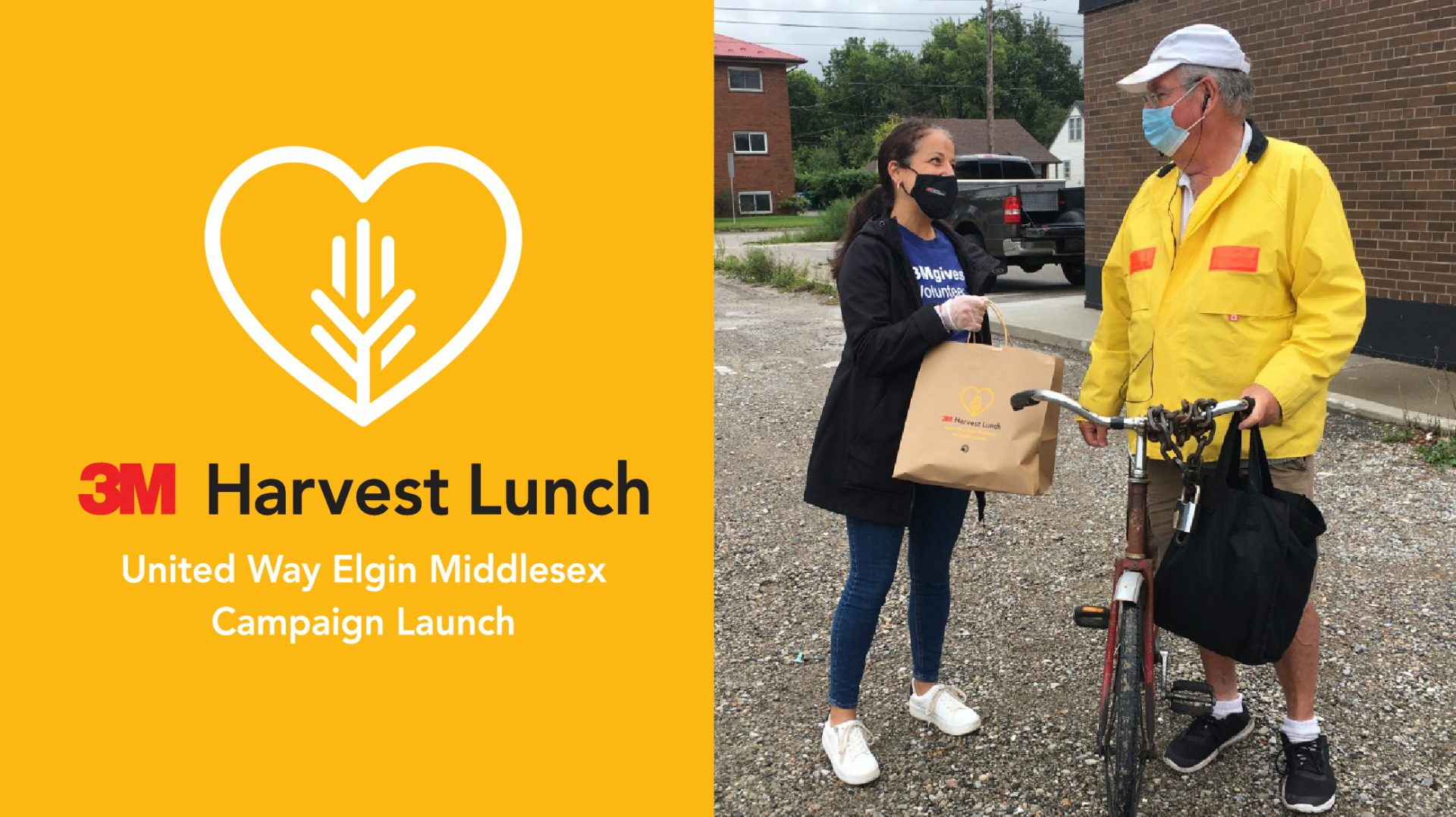 3M Harvest Lunch wrap story banner